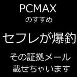 pcmaxsefure